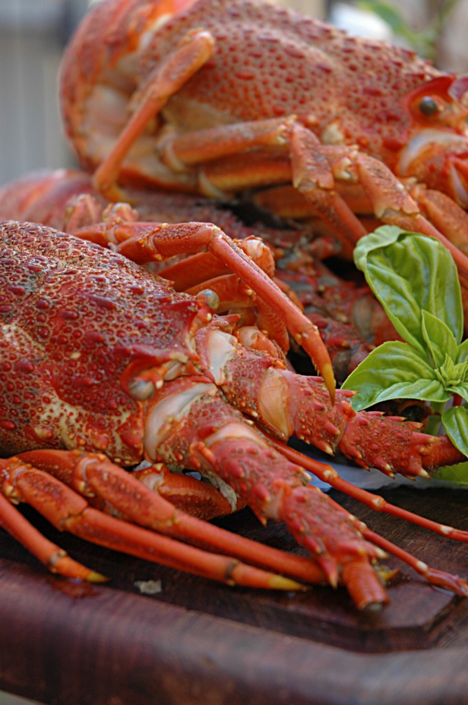 How To Cook Prepare And Eat Lobster | Apps Directories