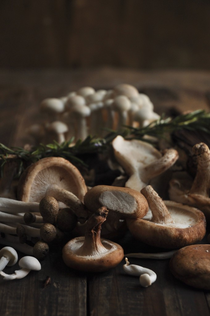 Mushrooms and toasted Brioche
