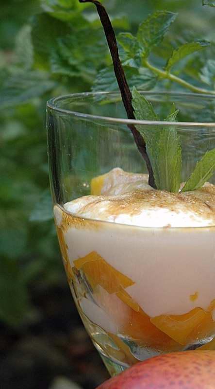 Mango and Yoghurt Delight