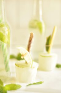 gin and tonic lollies
